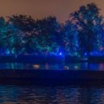 Signal festival 2015, Magical Garden