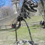 Hrad Helfštýn, dinosaurus