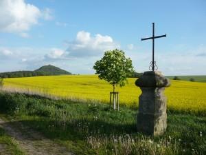 Krajina v okolí Máchova jezera