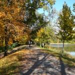 Cesta podél Počernického rybníka