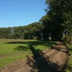 Cyklostezka do Radotína