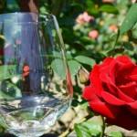 Vinařství Mrkvovi