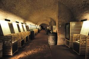 Salon vín, zámek Valtice